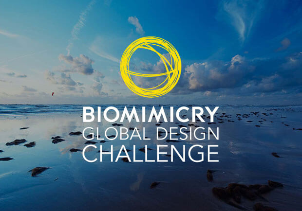 Biomimicry-Global-Design-Challenge-2017